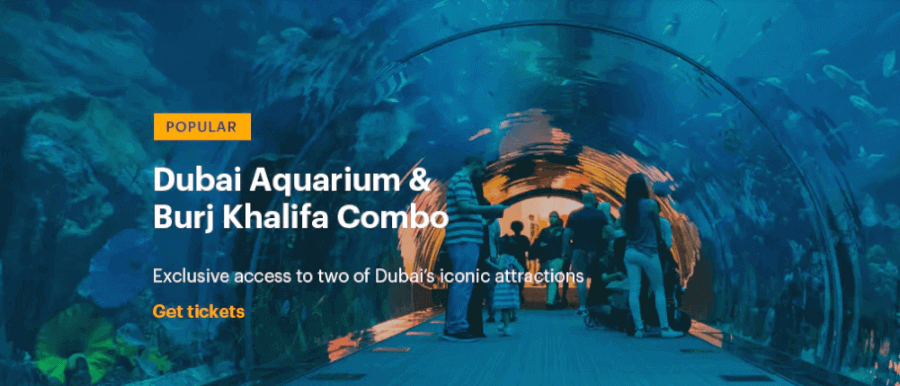 Aquarium for all the family