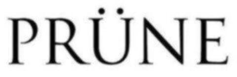 logo Prune