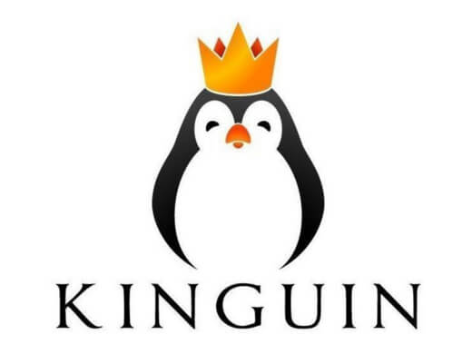 Kinguin Cupom
