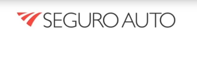 Seguro Auto Logotipo