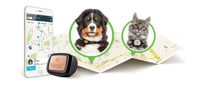 GPS obojekt pro zvíře za nízkou cenu