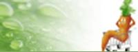 slevové kódy Zdravá mrkvička