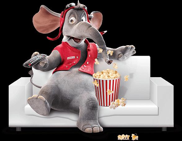 Ein Elefant vor dem Fernseher