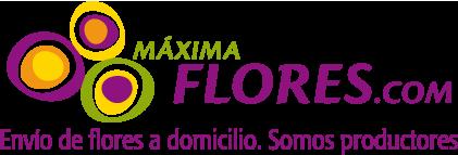 logo maxima flores