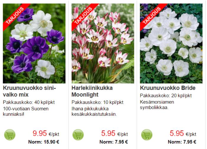 Kukkia tarjoushinnoin