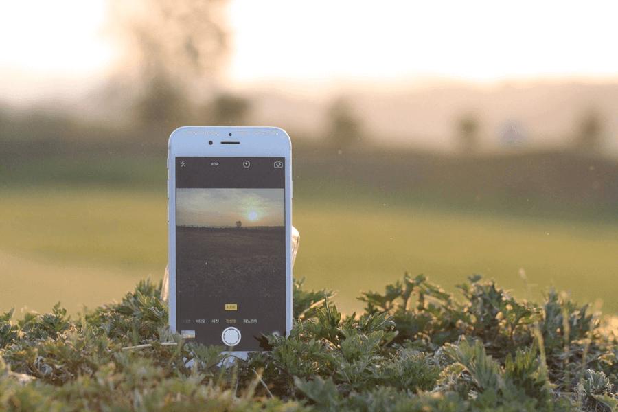 mobilroyal telefon