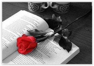 """""""libro"""