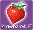 logotipo strawberrynet
