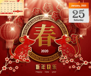Chinese New Year Special Sale