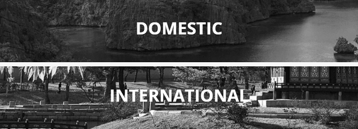 Domestic and international experiences