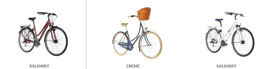 oferta bikester