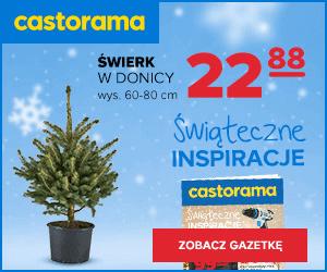 Gazetka promocyjna w Castorama!