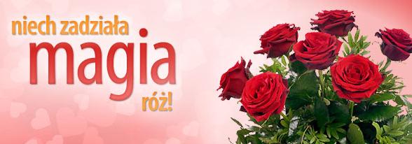 Róże zawsze magiczne z Euro Florist