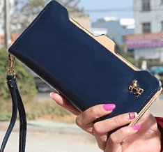 portofel în mână