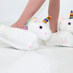 papuci amuzanți