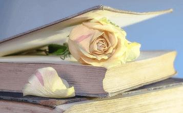 Trandafir în carte