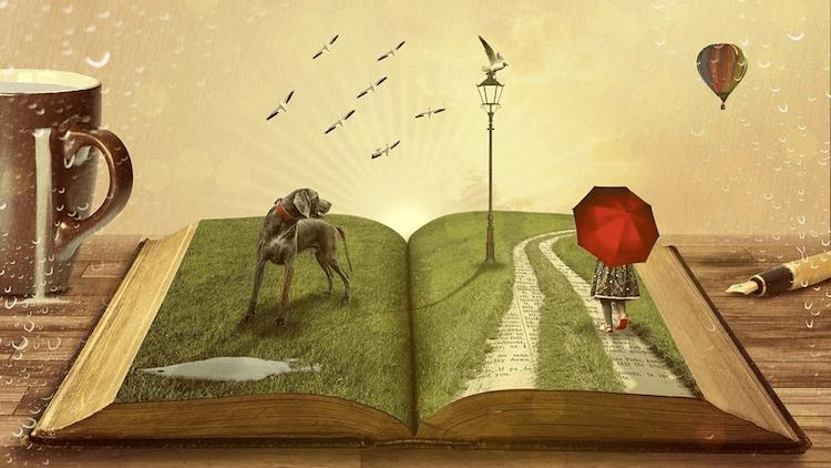 Книги — это счастье