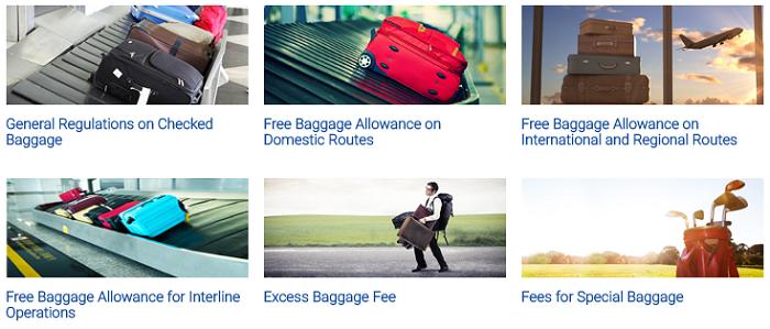 Additional baggage allowance