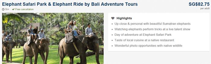 Nigeria Expedia safari