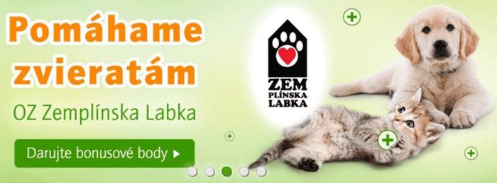 Zoohit pomáha i zvieratám, ktoré skončili na ulici a následne v útulkoch