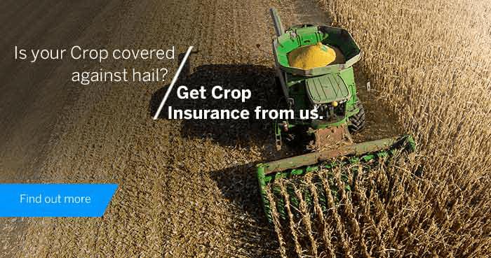 ZA Standard Bank crop insurance